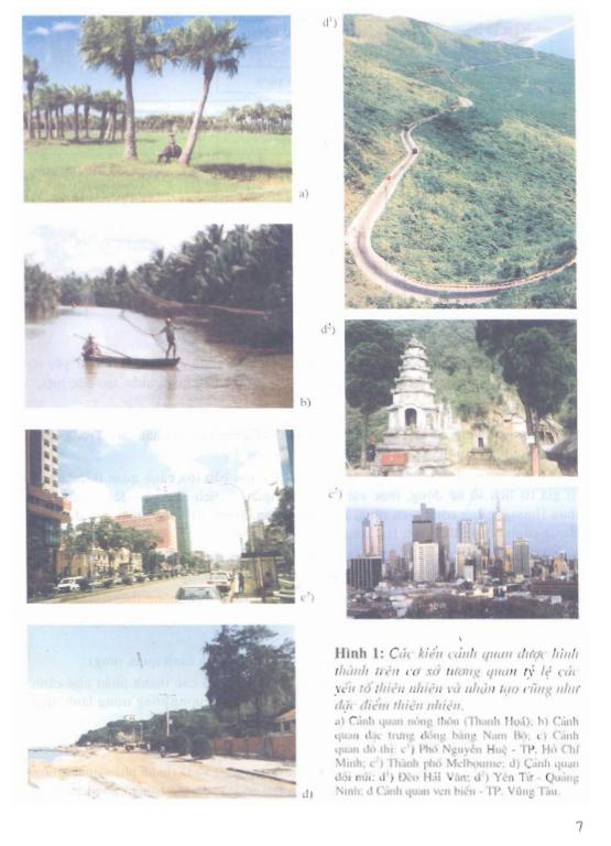 Sách kiến trúc cảnh quan hình ảnh